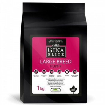 Gina Elite Large Breed Puppy